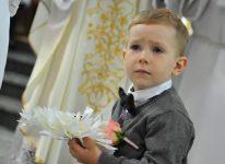 mały model trzyma obrączki w kościele fotograf się postarał
